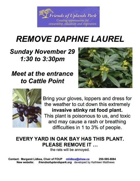 2015 Nov 29 poster Remove Daphne