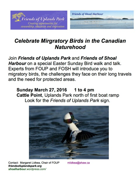 FOUP 2016 Mar27 poster Celebrate Mirgratory Birds in the Naturehood