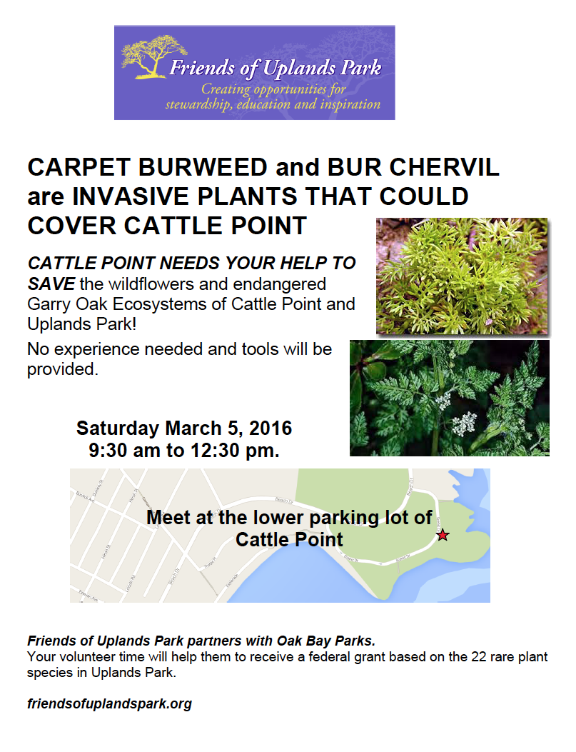 March 5 2016 invasive removal poster Screen shot 2016-03-03 at 7.50.21 PM