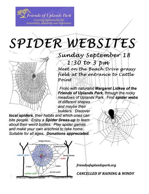 2016-sept-18-spider-websites-poster-jpeg