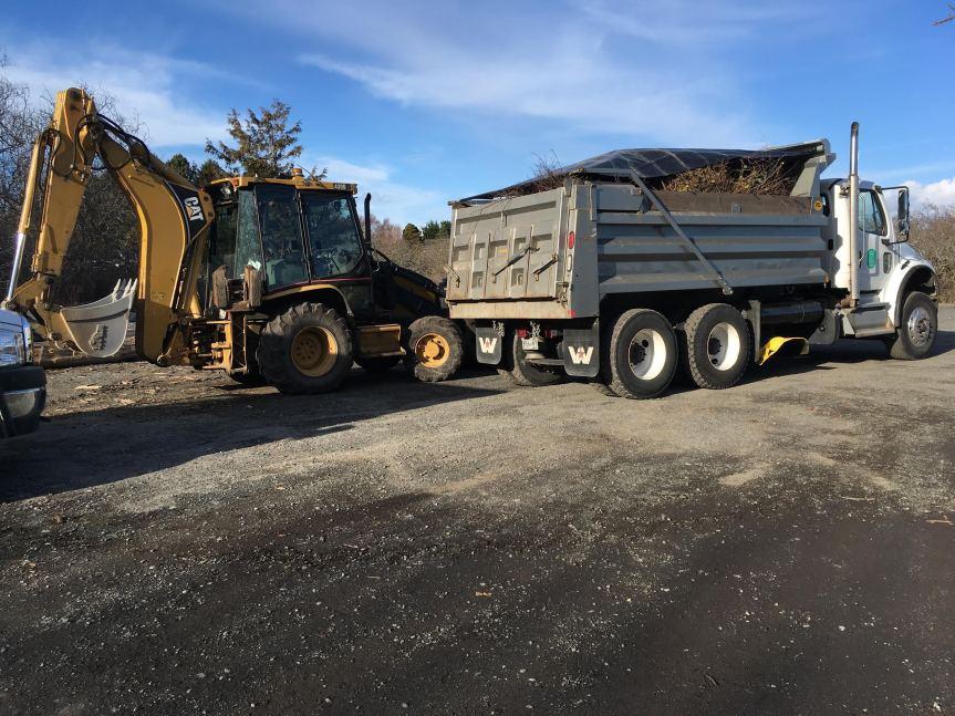 cattlepoint_feb2017_biomass_wyliephoto