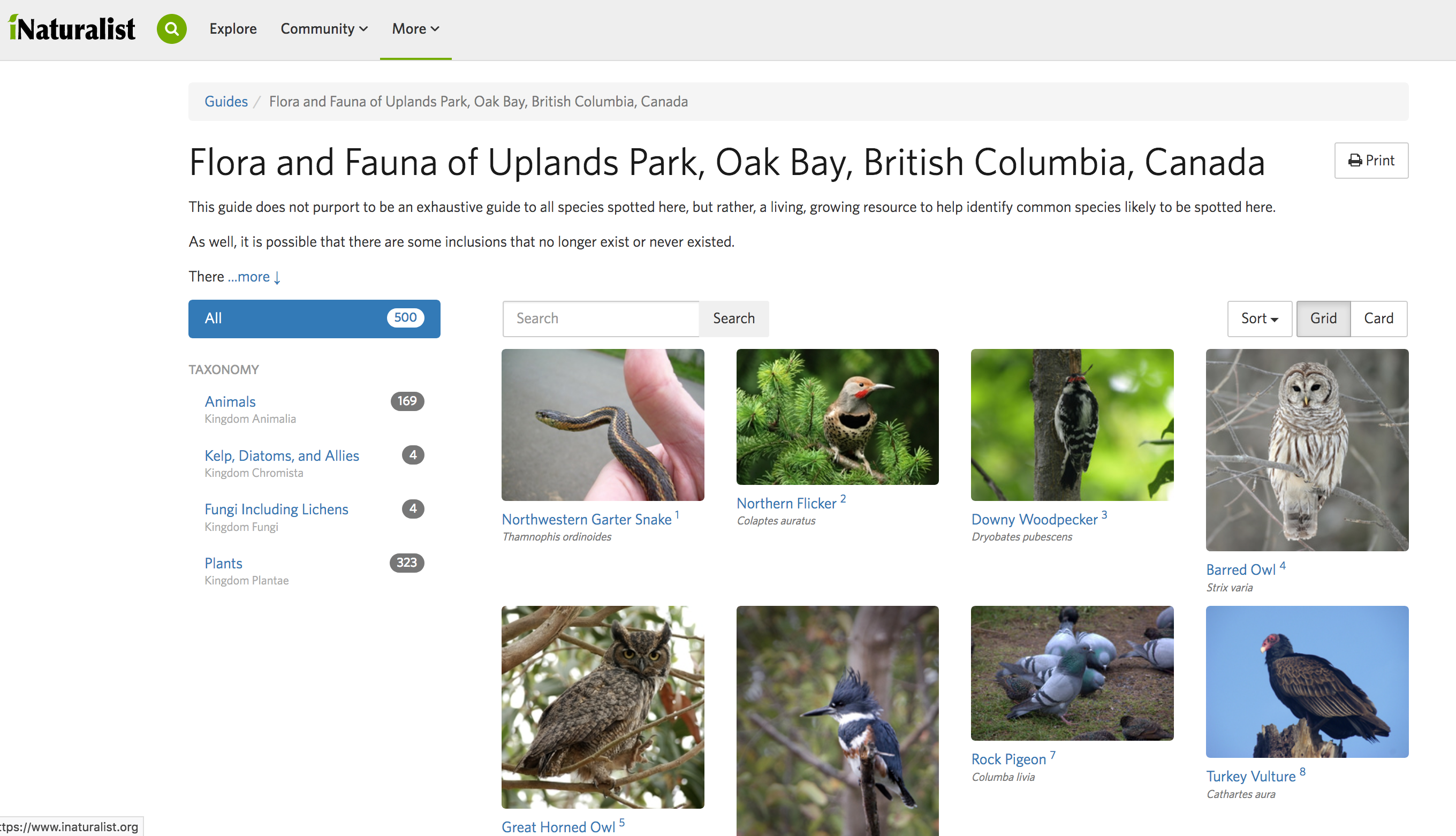 iNaturalist – Uplands Park Flora & Fauna – Friends of